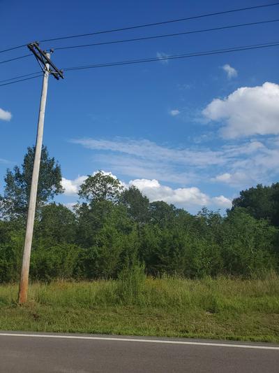 0 HOLLY GROVE RD, Lascassas, TN 37085 - Photo 1
