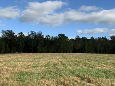 0 LONNIE SMITH RD, Woodbury, TN 37190 - Photo 1