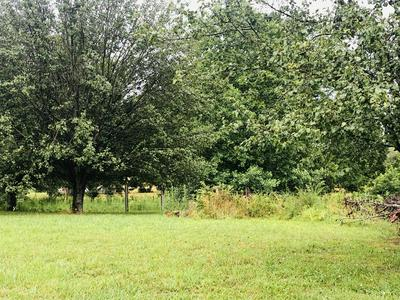 699 HOWELL HILL RD, Flintville, TN 37335 - Photo 2