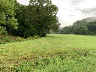 0 COX HOLLOW LN, Whitleyville, TN 38588 - Photo 1