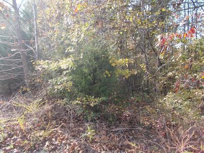 1124 JACOBS CT, Joelton, TN 37080 - Photo 1