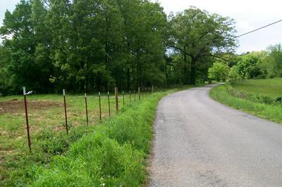 1315 WEBBS CAMP RD, Walling, TN 38587 - Photo 2