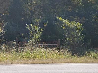 0 LEWISBURG HWY N, Pulaski, TN 38478 - Photo 1