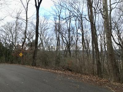 322 STONEYBROOK RD, Columbia, TN 38401 - Photo 2