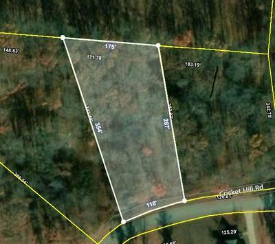 0 CRICKET HILL RD, Flintville, TN 37335 - Photo 1