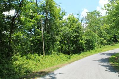 0 RILEY CREEK ROAD, Whitleyville, TN 38588 - Photo 2