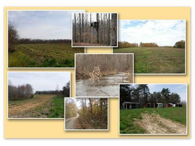 627.50AC BARNES ROAD, Whitleyville, TN 38588 - Photo 1