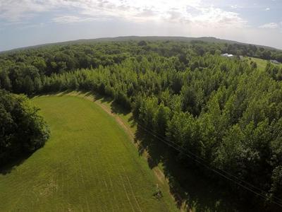 0 WHITAKER BEND DR, Linden, TN 37096 - Photo 2