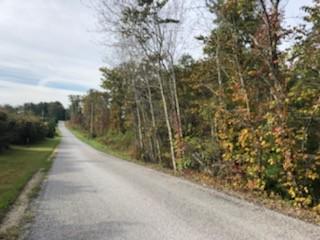 0 SR-56, Coalmont, TN 37313 - Photo 2