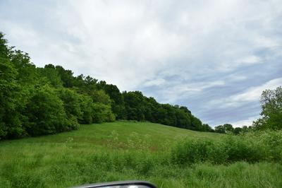 0 BETTYS BEND RD, Lancaster, TN 38569 - Photo 2