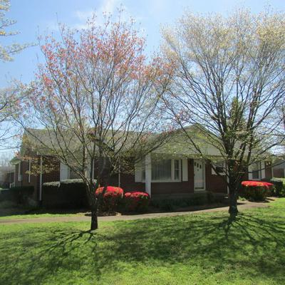 604 SPRINGER RD, LAWRENCEBURG, TN 38464 - Photo 1