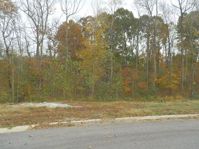35 MEADOWLAND (LOT 35), Adams, TN 37010 - Photo 1