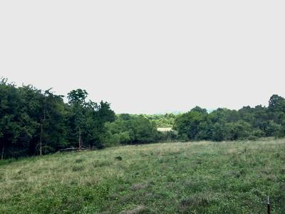 0 WABASH RD, Lynchburg, TN 37352 - Photo 2
