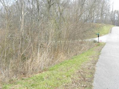0 DAVIDSON, Smithville, TN 37166 - Photo 2