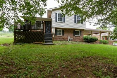 110 N COLLEGE ST, Mount Pleasant, TN 38474 - Photo 1