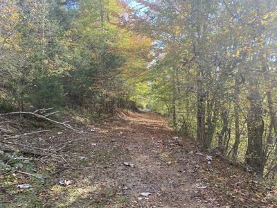 0 GREENBRIAR RD, Lawrenceburg, TN 38464 - Photo 2