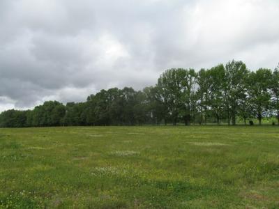 0 SUMMERTOWN HWY, Hohenwald, TN 38462 - Photo 2
