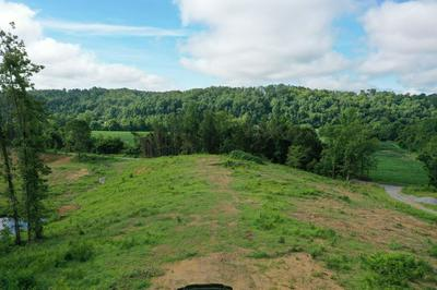 0 CUBA LANDING RD, Waverly, TN 37185 - Photo 2