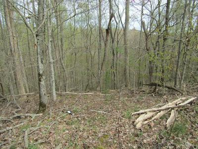 40 AC HAYDENBURG RD, Whitleyville, TN 38588 - Photo 2