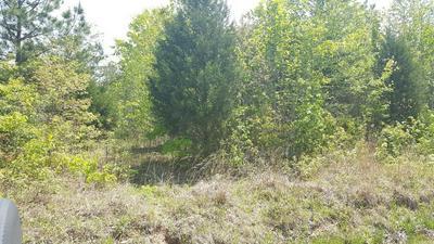 0 IRON LANE, Parsons, TN 38363 - Photo 2