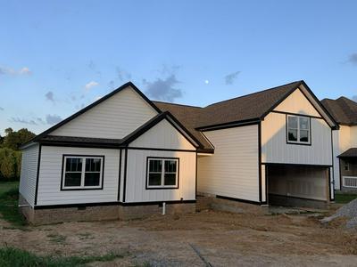 336 BRANDYWINE LN, Springfield, TN 37172 - Photo 1
