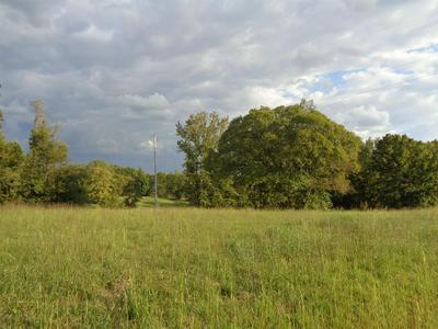 0 MARY ALICE RD, Leoma, TN 38468 - Photo 2