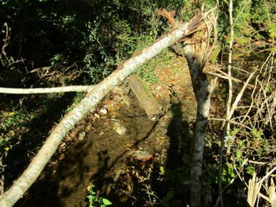 15 MOSS ARCOT ROAD, Celina, TN 38551 - Photo 2
