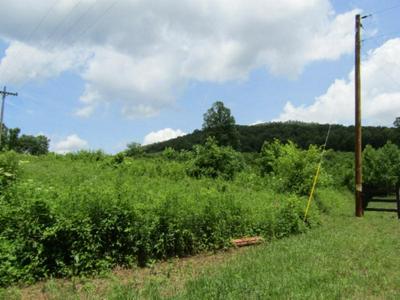 21 SHILOH RD, Crawford, TN 38554 - Photo 2