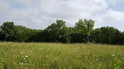 1 HWY 41A N, Unionville, TN 37180 - Photo 1