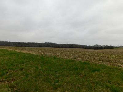 0 BRYSON RD, Elkton, TN 38455 - Photo 1
