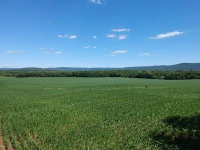 0 HIDDEN ACRES LN, Winchester, TN 37398 - Photo 1