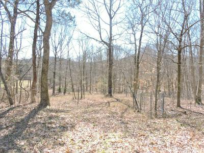2 HWY 96 POPLAR BLUFF RD. W., Auburntown, TN 37016 - Photo 2