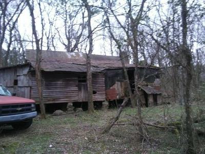 500 GRANT HWY, Gordonsville, TN 38563 - Photo 2