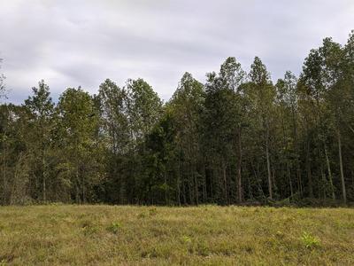 0 ANDY ANDERSON RD, Lynchburg, TN 37352 - Photo 2