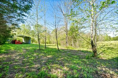 0 TROUGH SPRINGS RD., Adams, TN 37010 - Photo 2