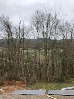 220 ALLISON DR, Pulaski, TN 38478 - Photo 2