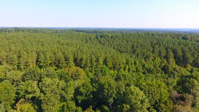 0 FOREST TOWER RD, Dover, TN 37058 - Photo 2