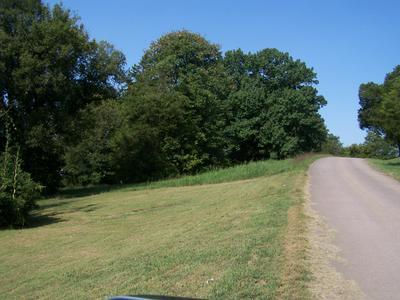 0 RILEY HL RD, Pulaski, TN 38478 - Photo 1