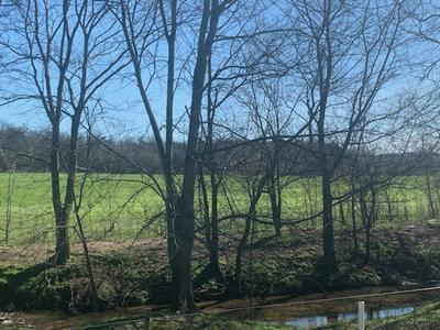 0 COOSIE BRANCH RD, Cornersville, TN 37047 - Photo 1