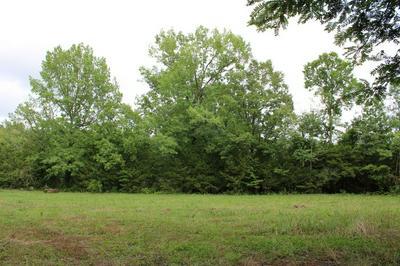 2798 CHERRY CORNER RD, Cornersville, TN 37047 - Photo 1