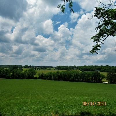 0 PHILLIPS LN, Watertown, TN 37184 - Photo 1