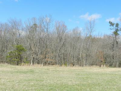 0 SR 56, Coalmont, TN 37313 - Photo 2