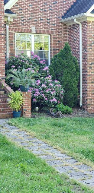 622 LEATHS BRANCH RD, Westmoreland, TN 37186 - Photo 2