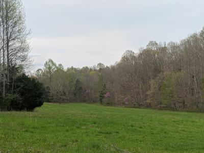 0 SPRING VALLEY RD, Erin, TN 37061 - Photo 2