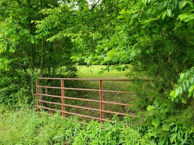 0 YOUNG HOLLOW ROAD, Pulaski, TN 38478 - Photo 1