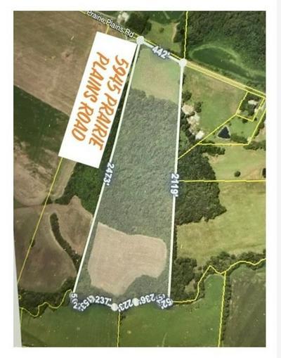 0 PRAIRIE PLAINS RD, Hillsboro, TN 37342 - Photo 1