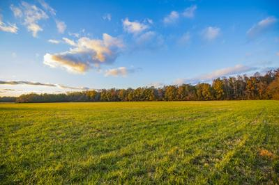 0 BELL RD, Morrison, TN 37357 - Photo 1