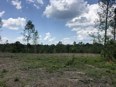 0 BUCK BRANCH RD, Lawrenceburg, TN 38464 - Photo 2