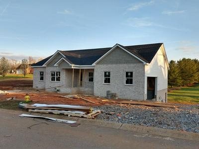 2994 SURREY RIDGE RD, CLARKSVILLE, TN 37043 - Photo 1