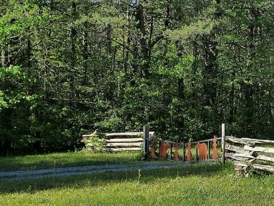 43 BLUFF WOODS, Altamont, TN 37301 - Photo 1